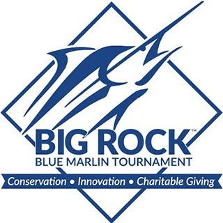 https://campalbemarle.org/wp-content/uploads/2021/03/Big-Rock-Charity-Logo-1-Color-JPG.jpg